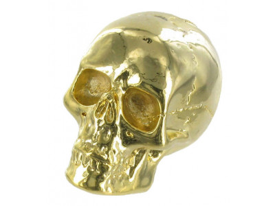 Qparts Potiknopf Jumbo Skull 2, gold, face up