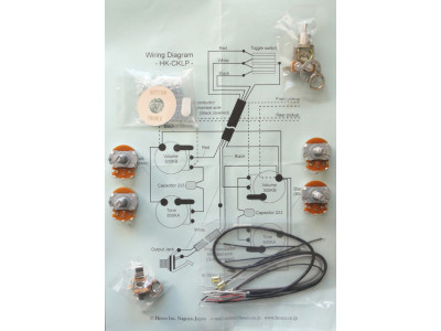Hosco HK-CKLP-I Electronic Set für LP-type Gitarren