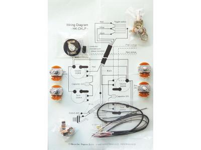 Hosco HK-CKLP-B Electronic Set für LP-type Gitarren
